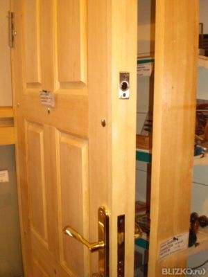 купить толстую входную дверь
