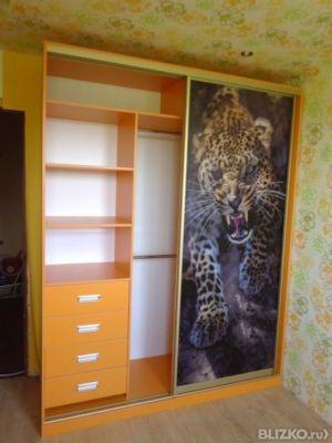 Шкаф-купе 2 створчатый рисунок леопард лдсп от компании генр.